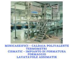 minicaseificio miko - optionals minicaseificio - termometri caseari - Cismatic - Assimatic